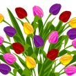 Bunch of tulips — Stock Photo #6851370
