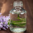 Spa essential oil — Stock Photo