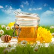 Jar of honey and spring flowers — Stock Photo