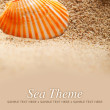 Sea Theme - sand and shells — Stock Photo