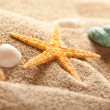 Starfish on sand — Stock Photo #7635900