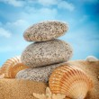 Beach - Stones and shells on sand — Stock Photo
