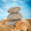 Beach - Stones and shells on sand — Stock Photo #7635986
