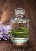 Spa essential oil — Stock Photo