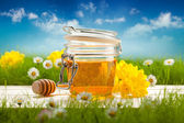 Jar of honey and spring flowers — Stockfoto