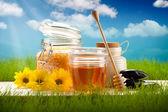 自然アロマセラピー - バスソルト、蜂蜜、花 — ストック写真