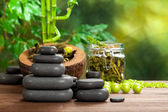 Spa stones and plants — Stock Photo
