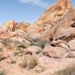 Stock Photo: Rainbow Vista, Valley of Fire