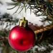 Red ball on a festive Christmas tree — Stock Photo