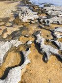Sea stone — Stock Photo