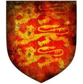 Emblema nazionale dell'inghilterra — Foto Stock