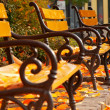 Stock Photo: Autumn mood with benches in park