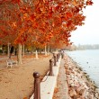 Stock Photo: Beautiful promenade at Lake Balaton in autumn, Hungary
