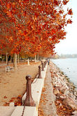Beautiful promenade at Lake Balaton in autumn, Hungary — Stock Photo
