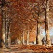Autumn promenade at Lake Balaton, Hungary - Stock Photo