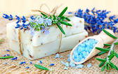 Natural soap, herbs and bath salt — Stock Photo