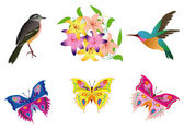 Vector illustration with birds, butterfly and flowers — Stock Vector