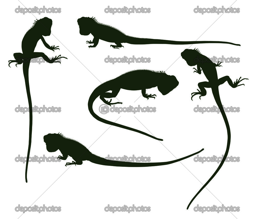 Set of silhouettes iguana, vector illustration — Stock Vector #7172674