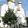 Uspensky cathedral in Yaroslavl Russia — Stock Photo #6910934