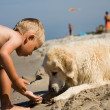 图库照片: Boy plays with dog on beach