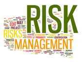 Risk management in tag cloud — Stockfoto