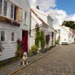 Norwegian architecture — Stock Photo
