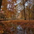 Park in Oliwa — Stockfoto