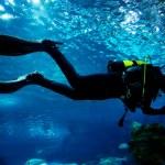 Diving in the ocean underwater — Stock Photo