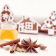 Honey gingerbreads — Stock Photo #7818866
