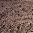 Fresh soil background closeup — Foto Stock