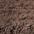 Fresh soil background closeup — Stockfoto