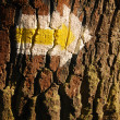 Royalty-Free Stock Photo: Yellow arrow on tree