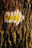 Yellow arrow on tree — Stock Photo