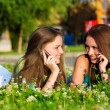 Foto de Stock  : Two girlfriends in park with a mobile phone