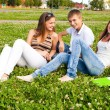 Small group of students in a clearing on meadow — Stock Photo