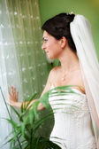 Portrait of beautiful young bride with wedding hairstyle — Stock Photo