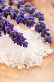 Bath Salt With Fresh Lavender Flowers — Stock Photo