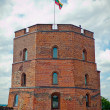 Tower Of Gediminas - Stockfoto