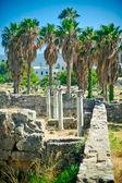 řecké ruiny — Stock fotografie