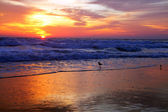 Sun rise — Stock Photo