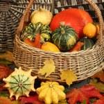 Yellow pumpkin — Stock Photo