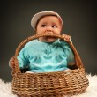 Infant in basket - Stock Photo