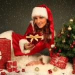 Christmas — Stock Photo #7500879