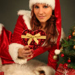 Christmas — Stock Photo #7500895