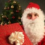 Santa Claus — Stock Photo #7500899