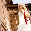 Fantastic beauty bride — Stock Photo