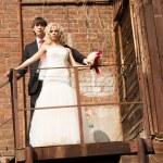 Bride and groom — Stock Photo #7339351
