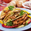 Grilled chicken in taco shells — Foto Stock