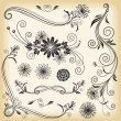 Floral Decorative Elements — Imagen vectorial