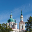 Постер, плакат: Cathedral of sacred great martyr Ekaterina Kingisepp Russia